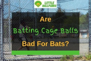 Are Batting Cage Balls Bad for Bats? (Solved!)