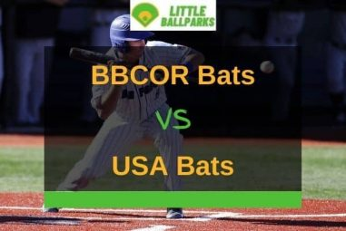 BBCOR vs USA Bat – What Are The Differences?