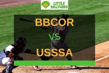 BBCOR vs USSSA – What's Better? (Explained!)