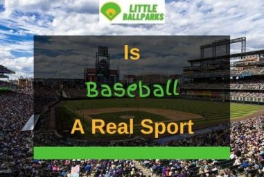 Is Baseball a Real Sport? (Solved!)