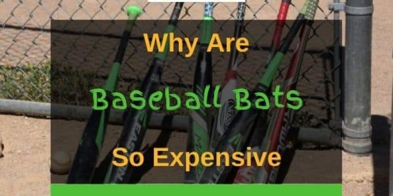 Why are Baseball Bats so Expensive? (Answered!)
